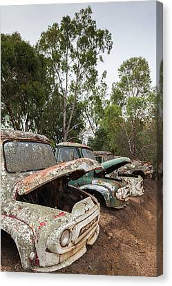 Old Trucks Canvas Print - Southwest Australia, Boyup Brook, Old by Walter Bibikow
