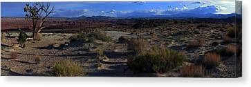 Southwest Snake Canyon Canvas Print by Maria Arango Diener