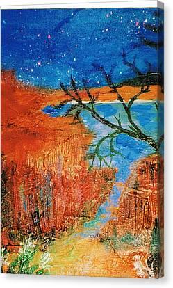 Southwestern Image II Canvas Print by Anne-Elizabeth Whiteway