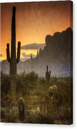 Southwestern Style  Canvas Print