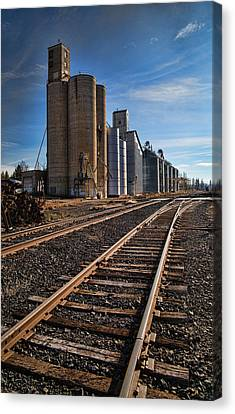 Spangle Grain Elevator Color Canvas Print