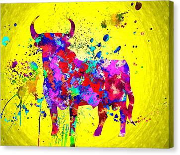Spanish Bull Canvas Print