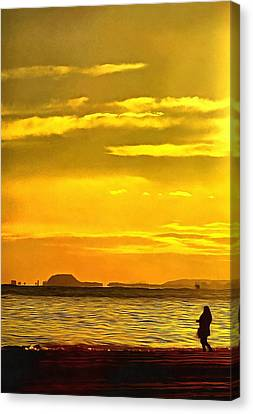 Spanish Marine Sunset Canvas Print by Mick Flynn