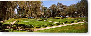 Spanish Moss Covered Trees In A Garden Canvas Print by Panoramic Images