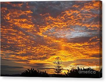 Spanish Sunset Canvas Print by Rod Jones