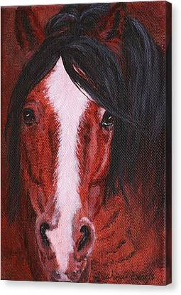 Forelock Canvas Print - Spanky by Wendi Curtis