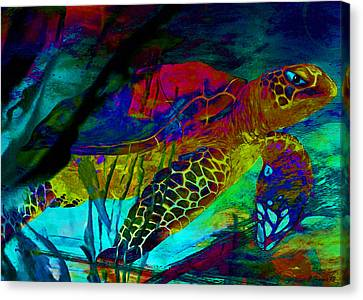 Turtle Shell Canvas Print - Sparkle Sea Turtle by Catherine Harms