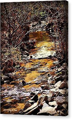 Canvas Print featuring the photograph Sparkling Creek by Tara Potts