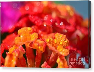 Sparkling Jeweltone Floral II Canvas Print by Debbie Portwood