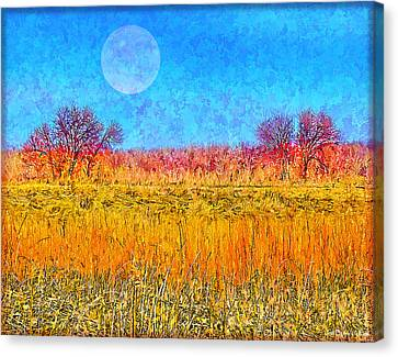 Canvas Print featuring the digital art Moonlight Over Fields Of Gold - Boulder County Colorado by Joel Bruce Wallach