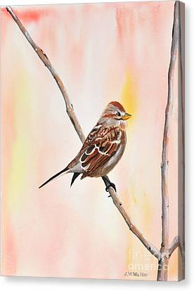 Sparrow I Canvas Print