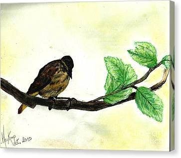 Sparrow On A Branch Canvas Print