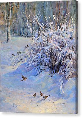 Sparrow On Snow Canvas Print