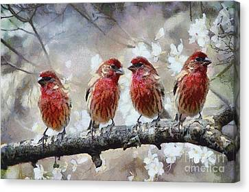 Canvas Print featuring the painting Sparrows by Georgi Dimitrov