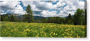Speaking Of Spring Canvas Print