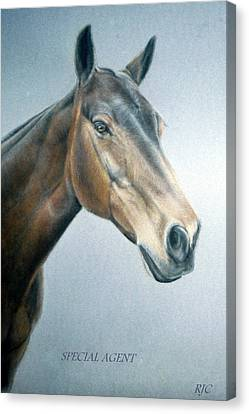 Canvas Print featuring the painting Special Agent by Rosemary Colyer
