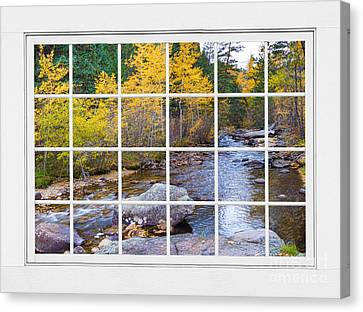 Special Place In The Woods Large White Picture Window View Canvas Print by James BO  Insogna
