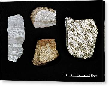 Specimens Of Oldest Rocks On Earth Canvas Print by Science Photo Library