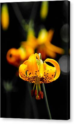 Speckled Canvas Print