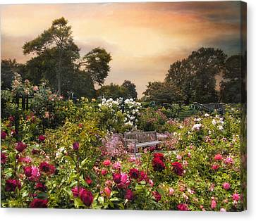 Spectacle Of Roses  Canvas Print