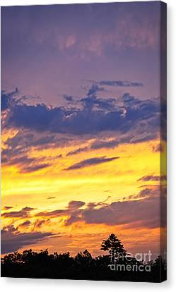 Spectacular Sunset Canvas Print by Elena Elisseeva
