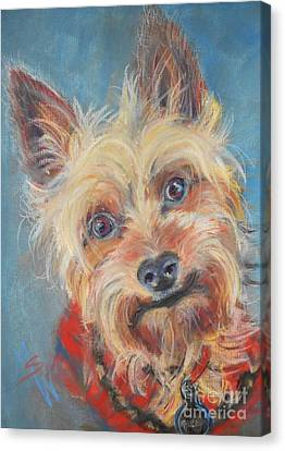 Spector Canvas Print by Mindy Sue Werth