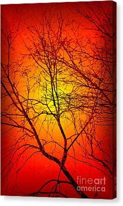 Spectral Sunrise Canvas Print