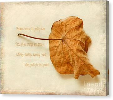 Spent Canvas Print