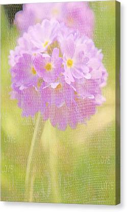 Sphere Canvas Print - Sphere Florale - 01tt01a by Variance Collections