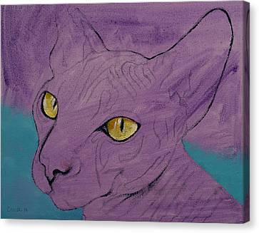 Purple Sphynx Canvas Print