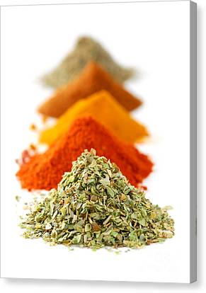 Dry Canvas Print - Spices by Elena Elisseeva