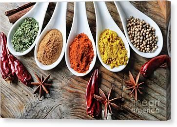 Spices Canvas Print by Jelena Jovanovic