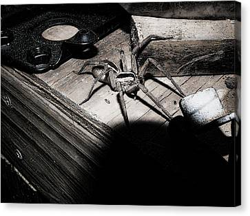 Canvas Print featuring the digital art Spider B And W by Robert Rhoads