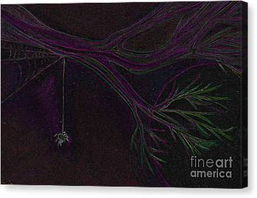 Spider Branch By Jrr Canvas Print by First Star Art