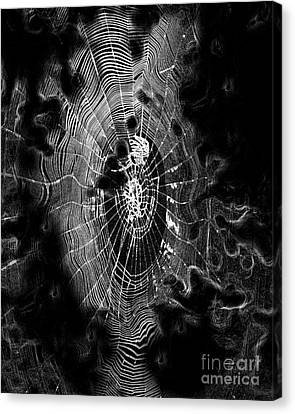 Spider Noir Canvas Print