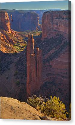 Canvas Print featuring the photograph Spider Rock by Alan Vance Ley