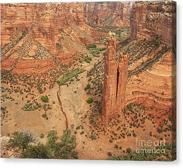 Spider Rock Canvas Print by Bob and Nancy Kendrick