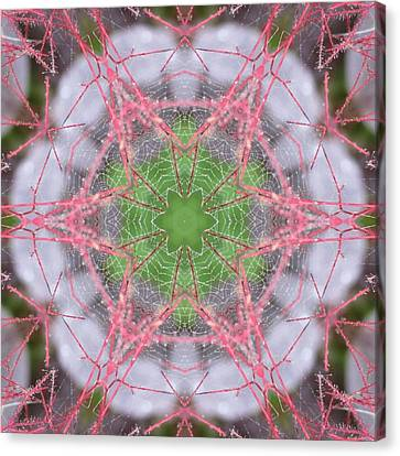 Canvas Print featuring the digital art Spider Web On Smokebush by Trina Stephenson