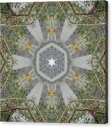 Spider Web Star Magic Canvas Print by Trina Stephenson