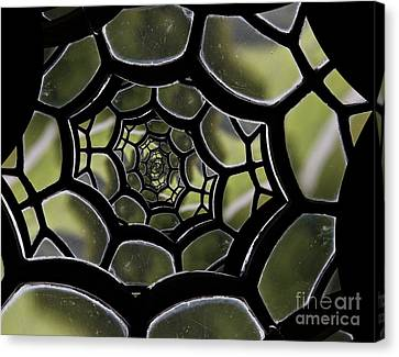 Canvas Print featuring the photograph Spider's Web. by Clare Bambers