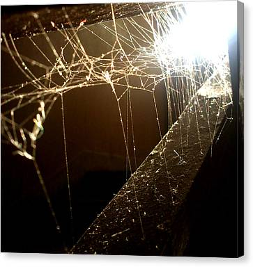 Canvas Print featuring the photograph Spiderweb by Lucy D
