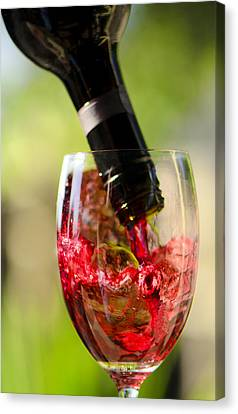 Spill The Wine  Canvas Print by Damian Morphou