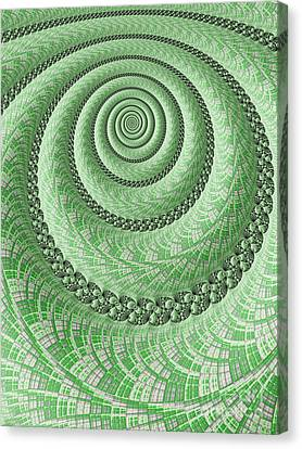 Spiral In Green Canvas Print