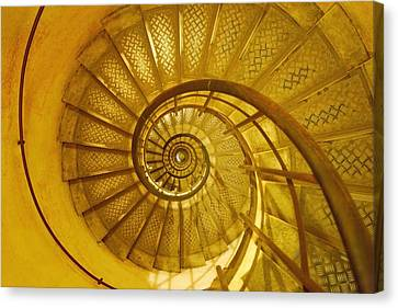 Spiral Staircase Canvas Print by Don Hammond