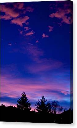 Spirit Above Canvas Print by Kevin Bone