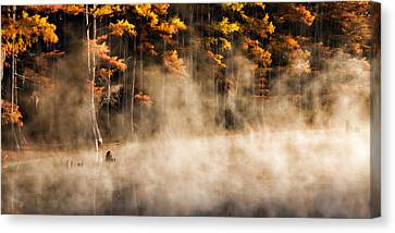 Canvas Print featuring the photograph Spirit Dance by Lana Trussell