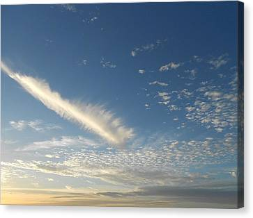 Spirit In The Sky Canvas Print by Sheila Silverstein