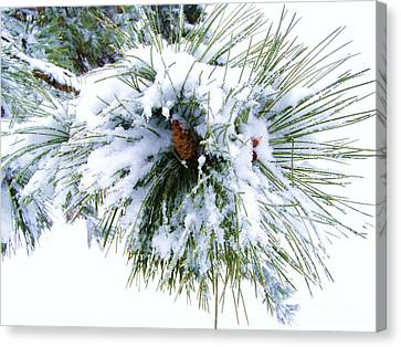 Canvas Print featuring the photograph Spirit Of Pine by Margie Amberge