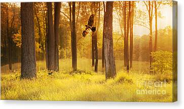 Spirit Of The Forest Canvas Print by Rima Biswas