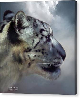 Spirit Of The Sky Canvas Print